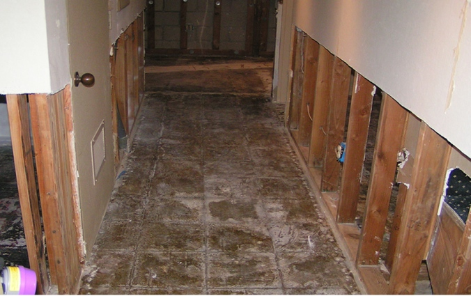 The Process of Water Damage Repair and Drying