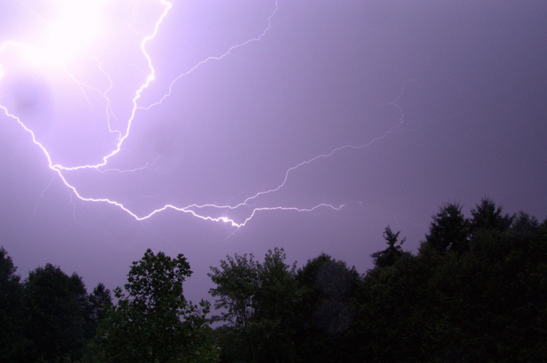 Florida Tops among Other States on Lightning Insurance Claims